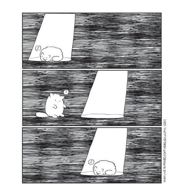 comics-convivir-gatos (23)