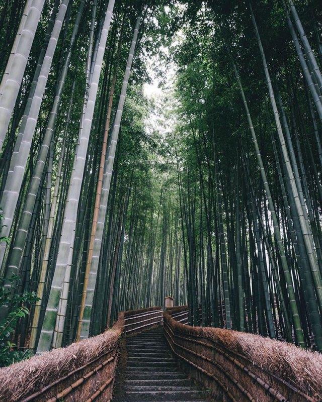 fotografia-vida-cotidiana-japon-takashi-yasui (12)