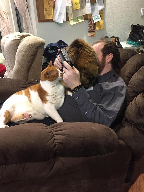 gatos-ajenos-espacio-personal (11)