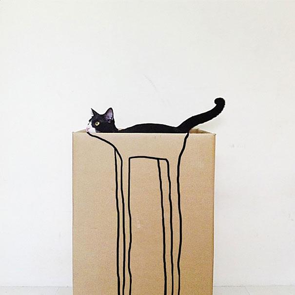 fotos-gatos-momento-justo (19)
