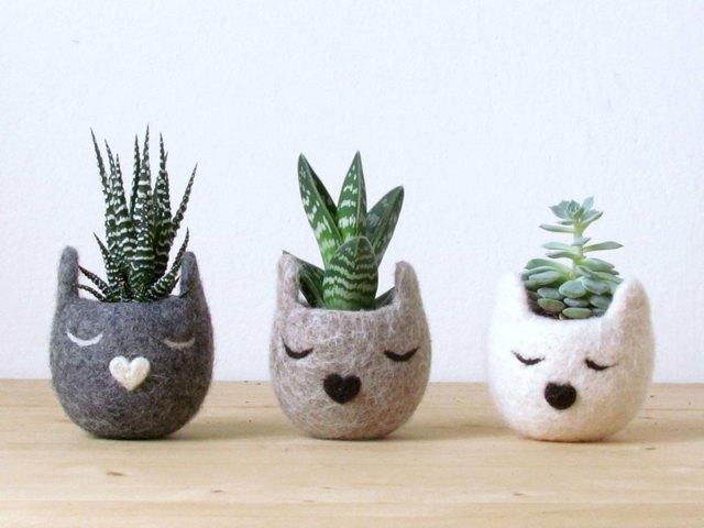 macetas-creativas-plantas (11)