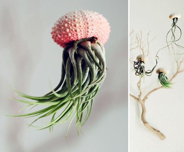 macetas-creativas-plantas (18)