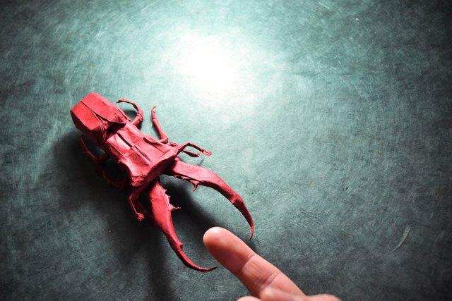 obras-origami-papiroflexia-gonzalo-garcia-calvo (16)