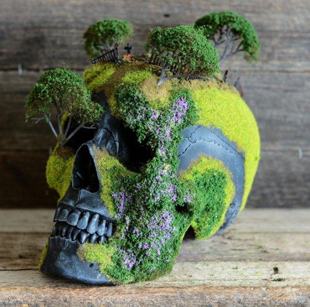 calavera-bonsai-jack-dust (3)