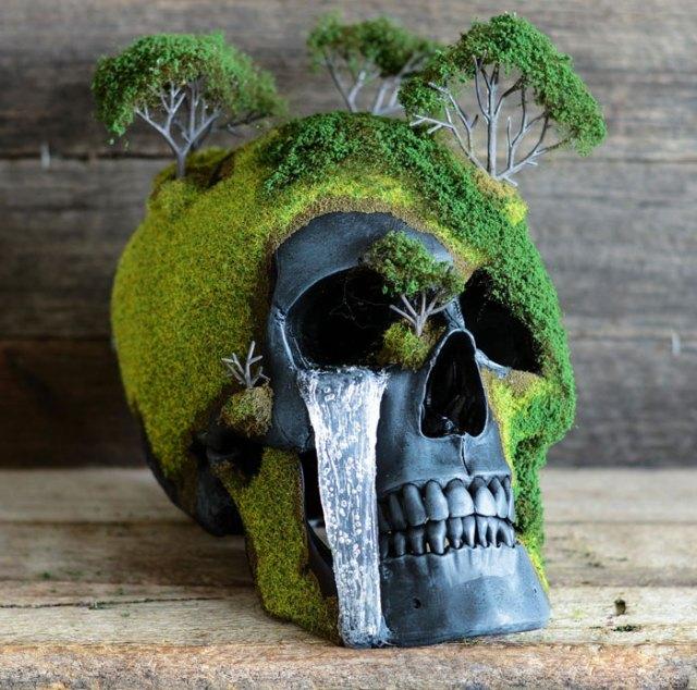 calavera-bonsai-jack-dust (6)