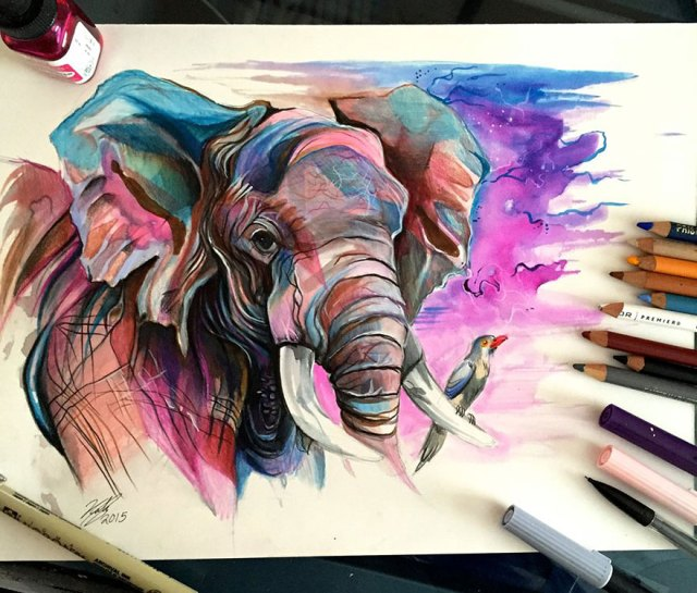 ilustraciones-animales-color-katy-lipscomb (15)