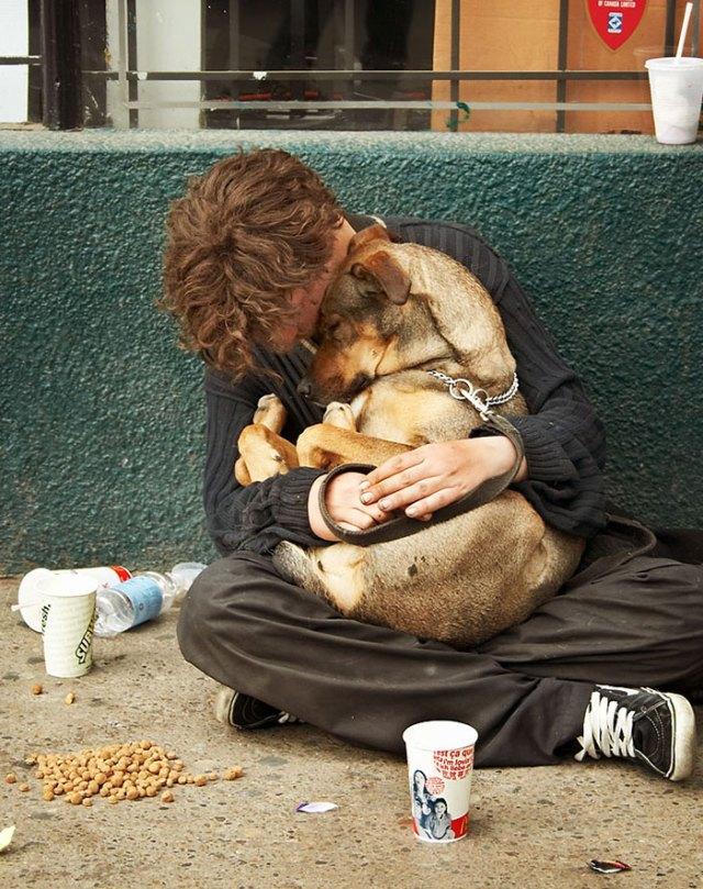 indigentes-perros-lealtad (10)