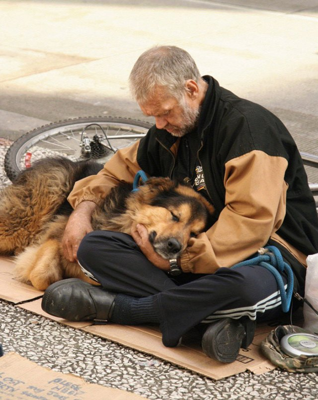 indigentes-perros-lealtad (2)