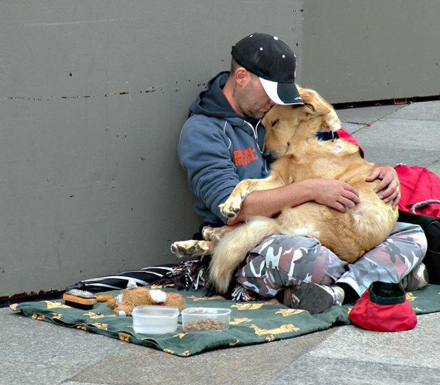 indigentes-perros-lealtad (6)