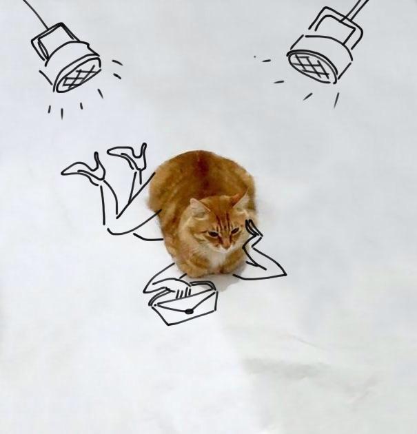 meme-foto-gato-dibujos-divertidos (7)