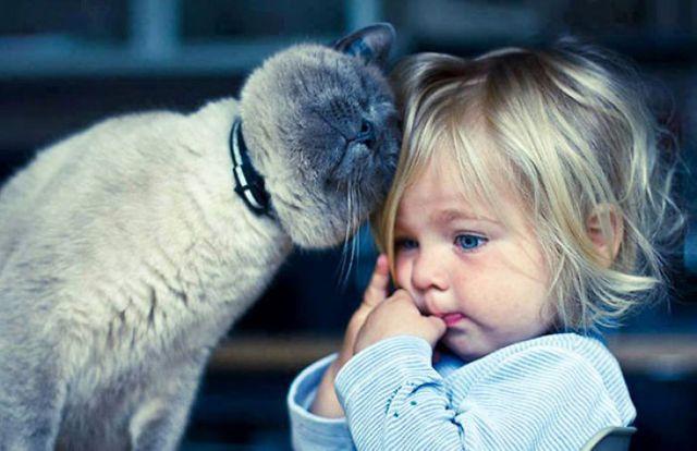 ninos-necesitan-mascotas (13)
