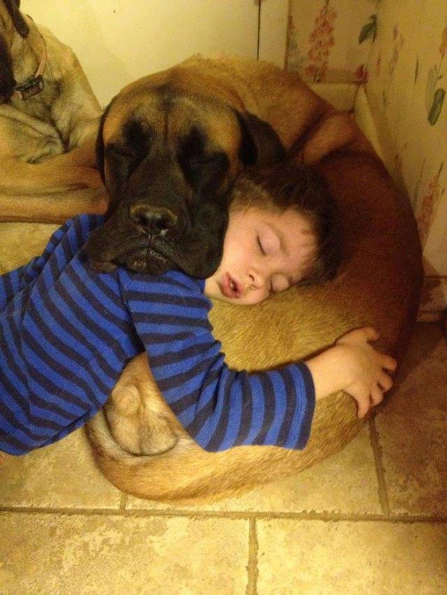 ninos-necesitan-mascotas (9)