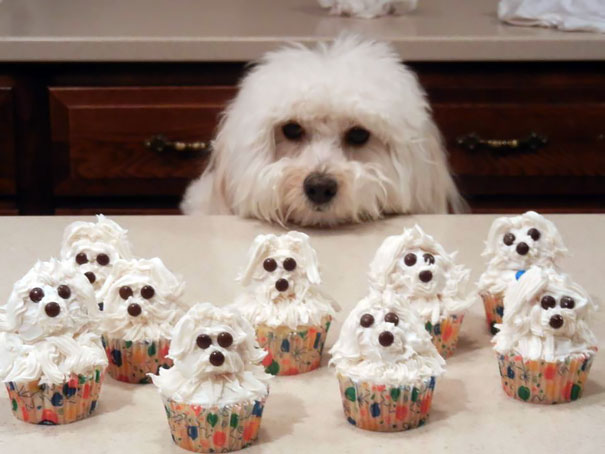 pastelitos-cupcakes-creativos (7)
