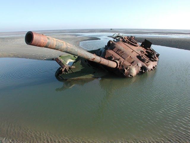 tanques-devorados-naturaleza (11)