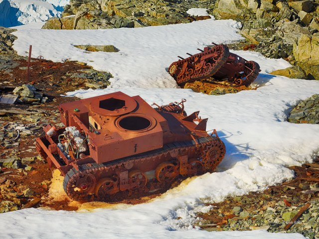 tanques-devorados-naturaleza (12)