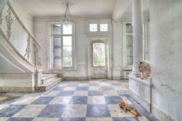 exploracion-lugares-abandonados-perro-claire-alice-van-kempen (19)