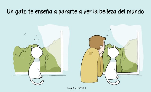 ilustraciones-beneficios-tener-gato-lingvistov-12