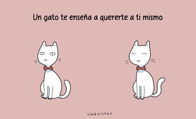 ilustraciones-beneficios-tener-gato-lingvistov-5