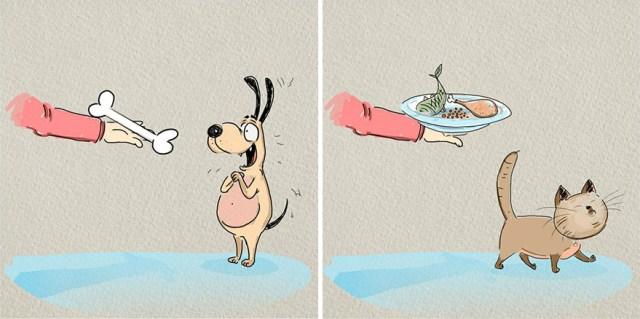 ilustraciones-diferencias-gatos-perros-bird-born (6)