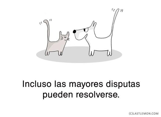 lecciones-vitales-gatos-lastlemon-16