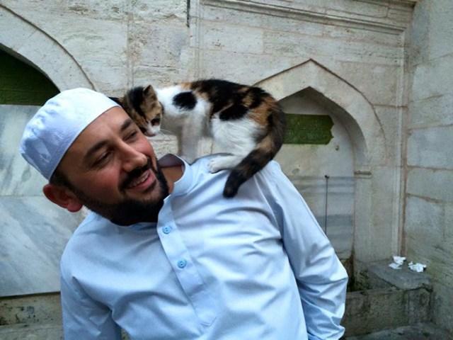 mezquita-gatos-callejeros-mustafa-efe-estambul (4)