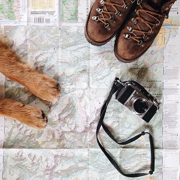 perro-aspen-viajes-aventura-hunter-lawrence (3)
