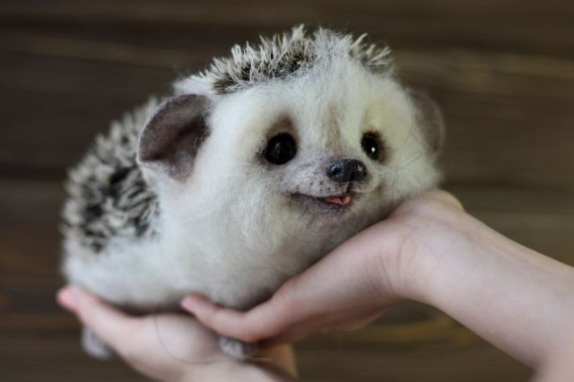 animales-adorables-lana-tatyana (6)