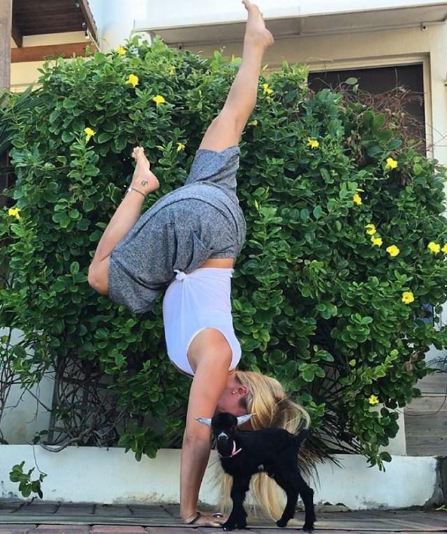 cabra-penny-yoga-rachel-brathen (6)