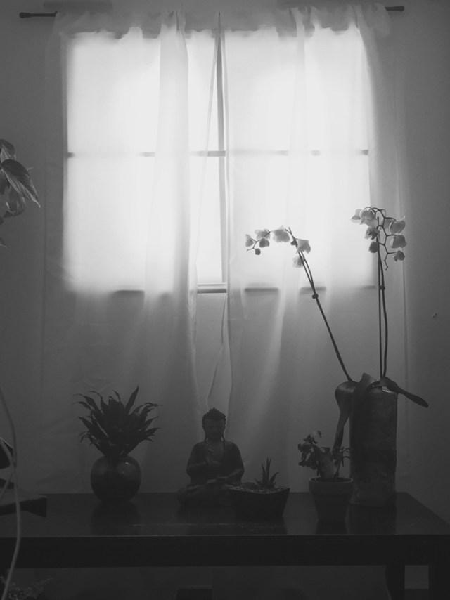 ventana-falsa-sotano-luces-led (9)
