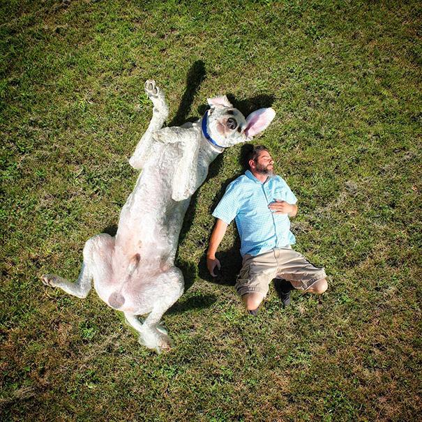 aventuras-juji-perro-gigante-photoshop-christopher-cline (6)