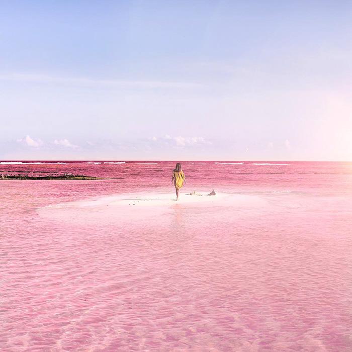 laguna-rosa-las-coloradas-mexico (5)