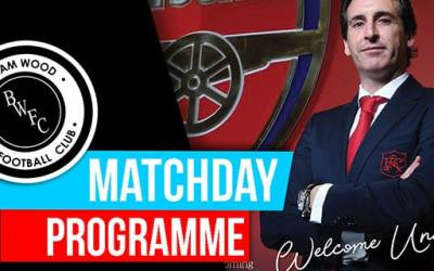 COMMEMORATIVE ARSENAL PROGRAMME AVAILABLE FOR FREE!