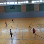 Fussball_2015