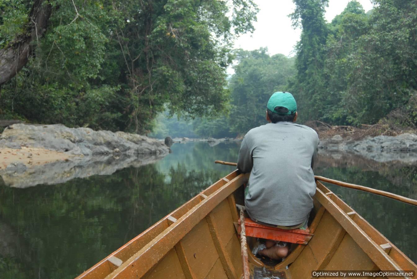 https://i2.wp.com/www.borneotourgigant.com/river.JPG