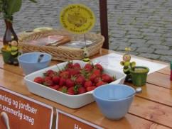 Honning-jordbærdag - Åkirkeby Torv 2014