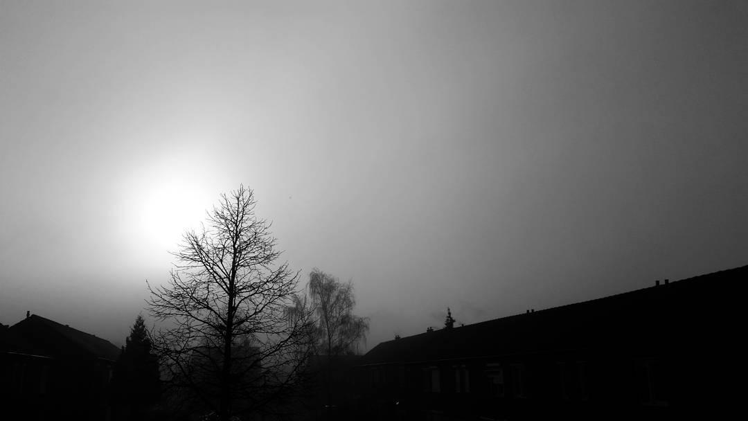 Het zonnetje komt door de mist heen..