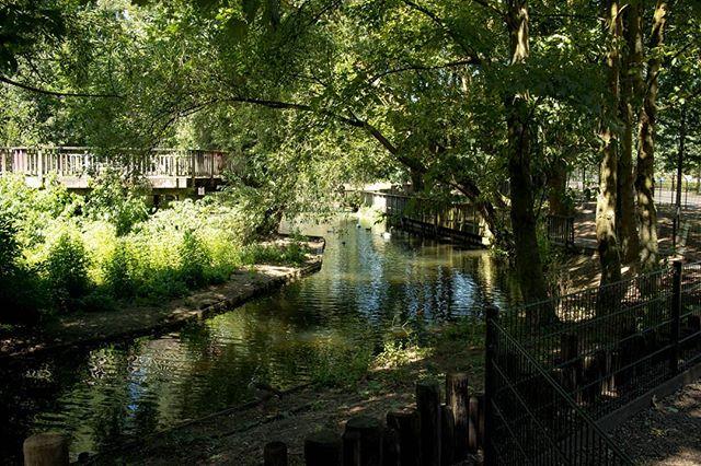 Mooi weer voor een bezoek aan #KasteelparkBorn  #born #borninbeeld #limburg #liefdevoorlimburg #cameranu_nl #zoomnl #canon #eosm5 #ditislimburg #beleeflimburg