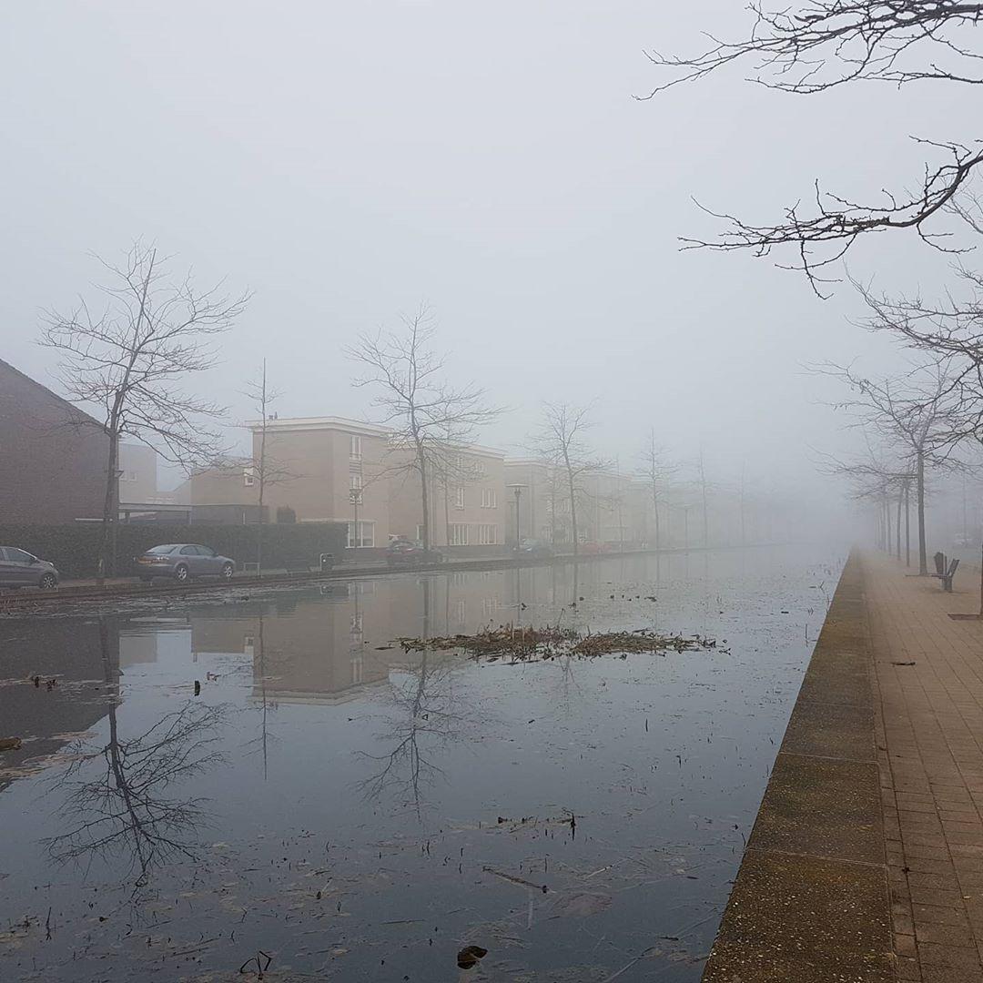 Het was lekker mistig vandaag.. #born #borninbeeld #mist #fog #foggyday #Limburg #limburginbeeld #inlimburg #aquariusborn #aldenhof 📸 @sjoerdsmeets