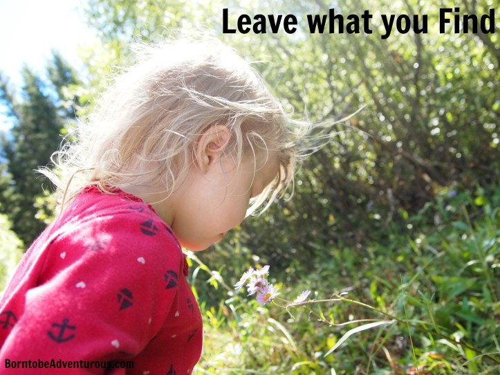 Leave no trace for toddlers