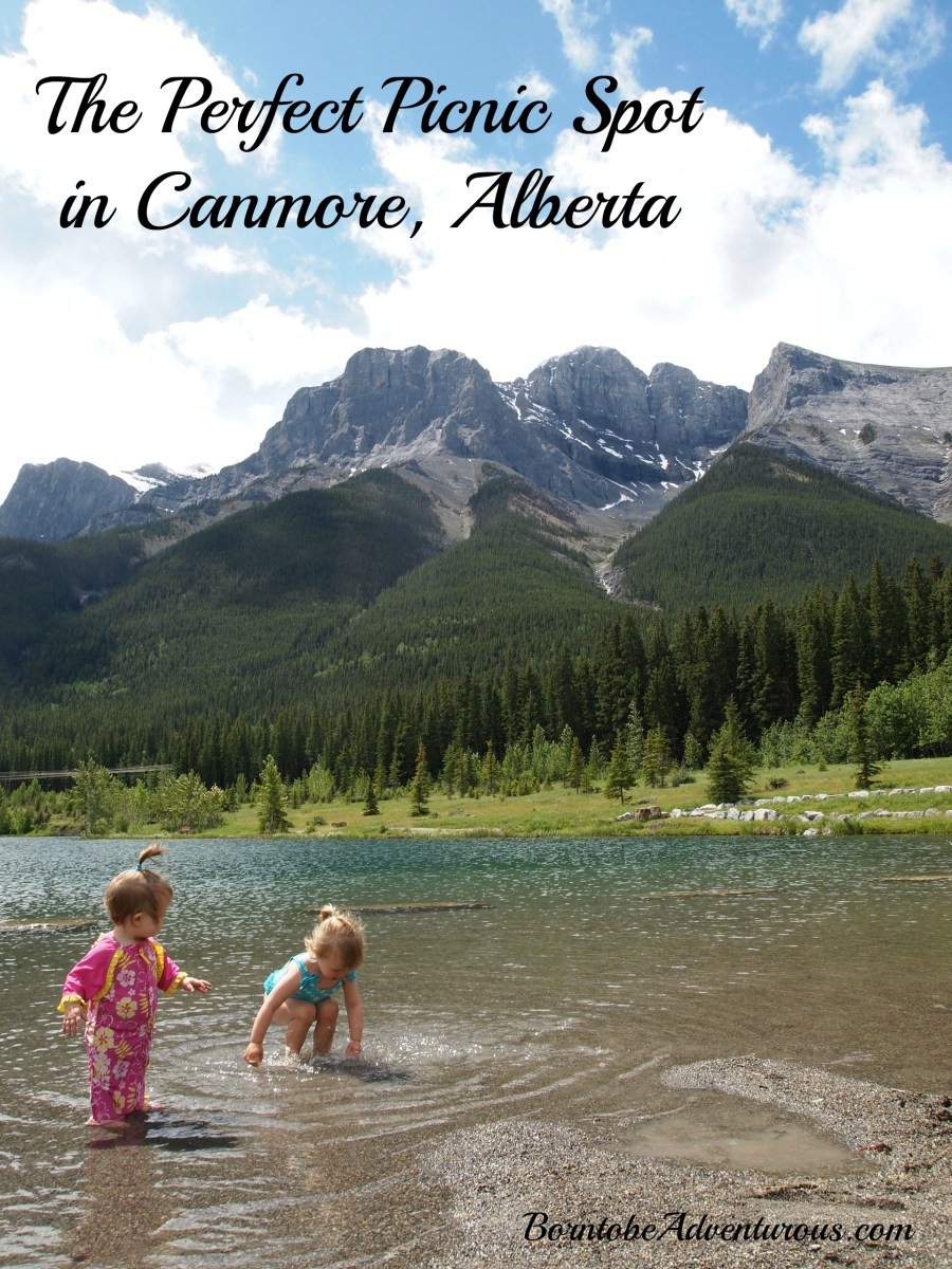 The Perfect Picnic Spot in Canmore
