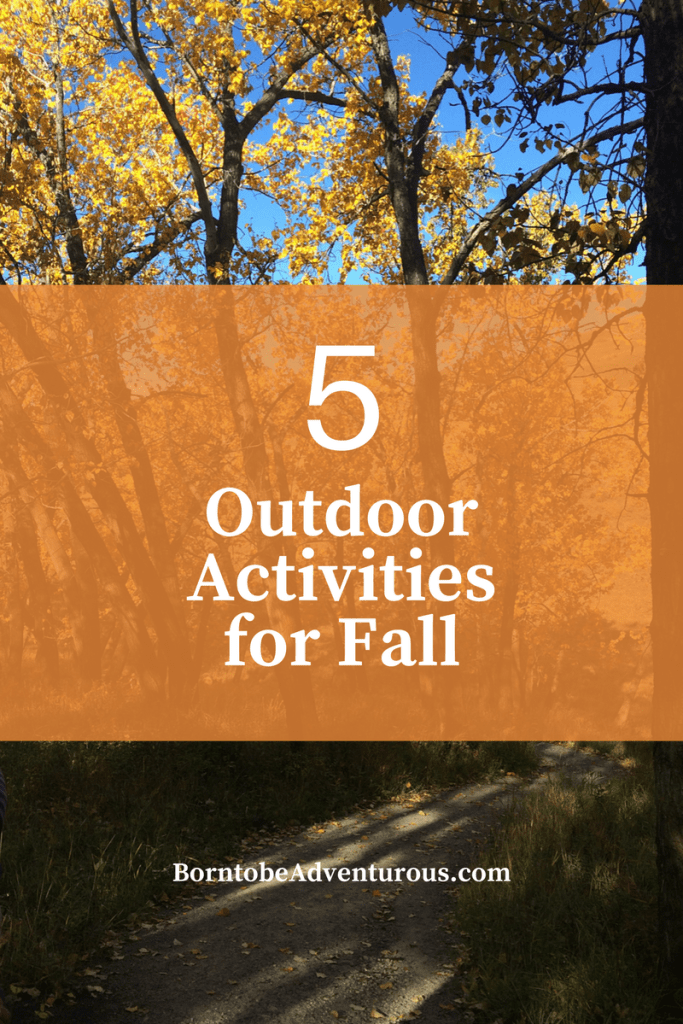 Outdoor Activities for Fall