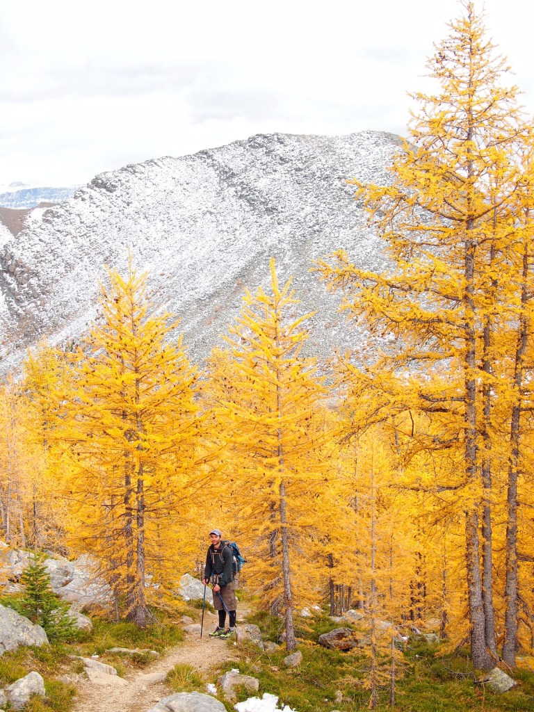 Fairview Mountain Alberta
