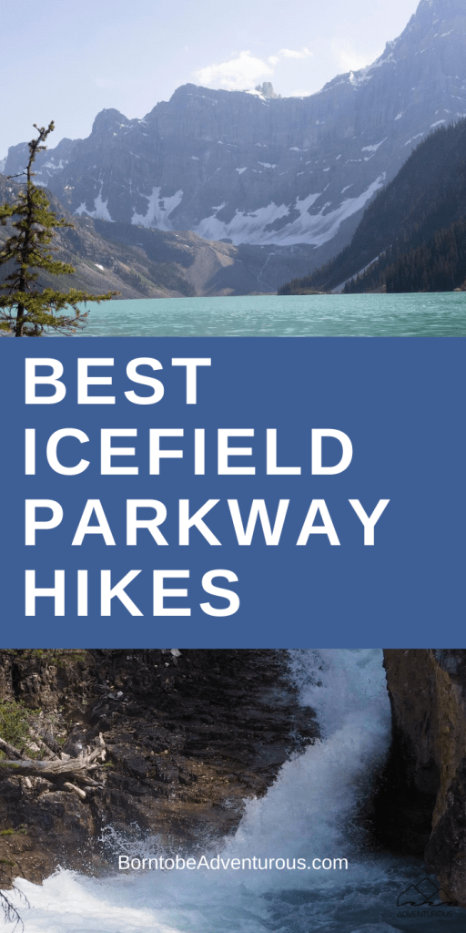 Icefield Parkway Hikes