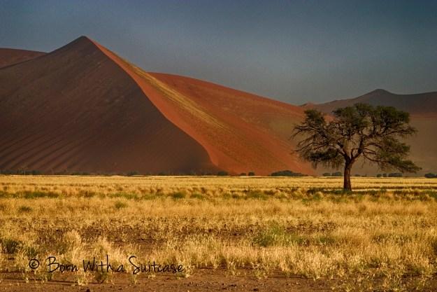 Namiba-Naukluft Park