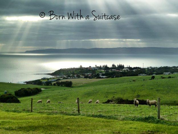 A road trip to South Australia