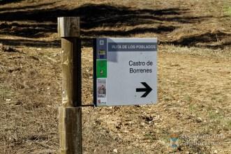 castro-borrenes-3