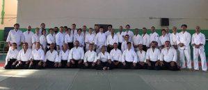 İkeda Shihan, Köprü ve Dostluk Semineri 2017 Aikido seminer