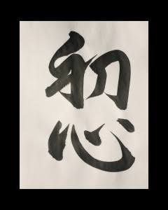 Shoshin, Başlangıç Zihni