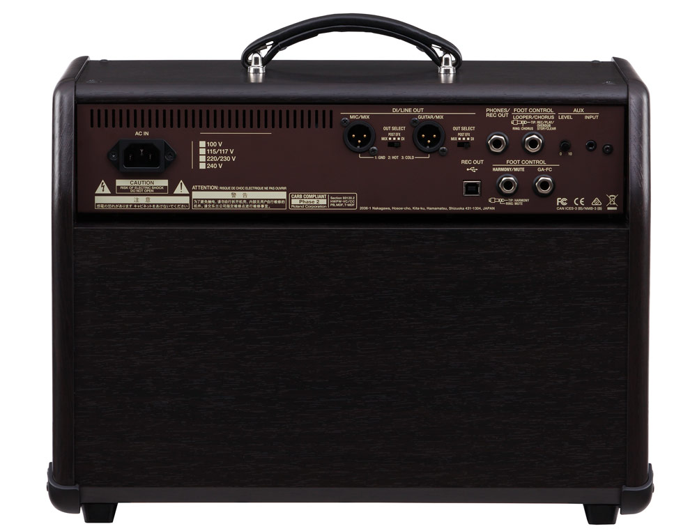 The rear panel of an Acoustic Singer amp features lots of connection options.