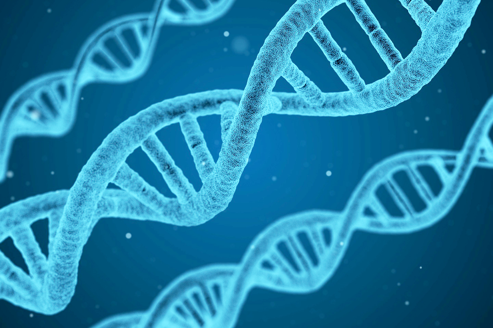 Molecular Biology Technical Resource Center